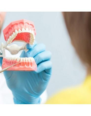 Dental consultation (dental diagnosis)