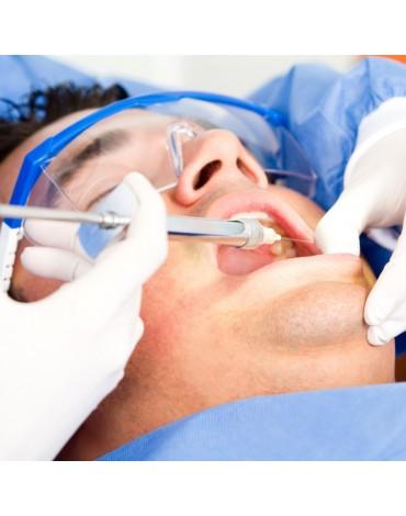 Molars endodontics (multiradicular)