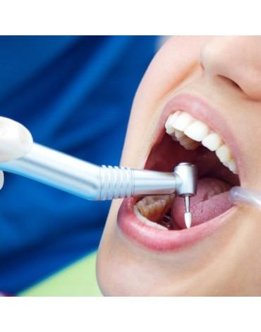 Anterior endodontics (unirradicular)